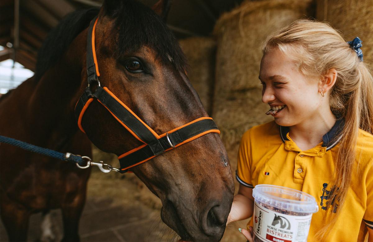 Horse Premium Bistreats Kon dostaje ciastka w nagrodę